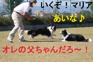 IMG_9472mt.jpg