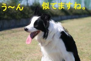 IMG_9489mt.jpg