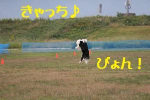 IMG_9769mt.jpg