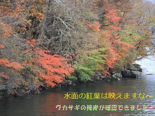 111021_PIC003.jpg