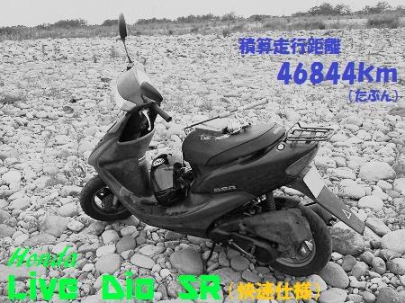 111021_PIC010.jpg