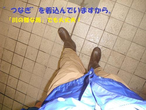 111113_PIC008.jpg