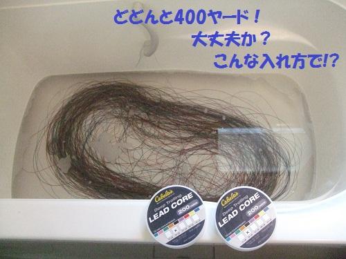 120212_PIC006.jpg