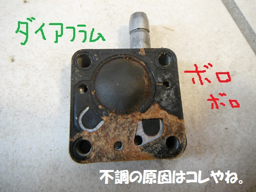 120401_PIC003.jpg