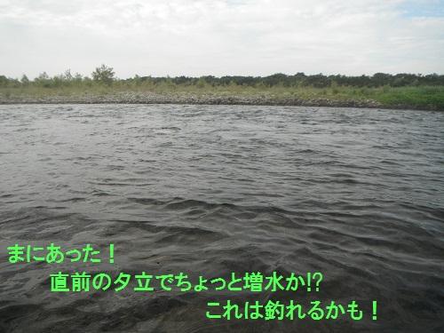 110714_PIC009