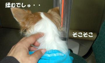 10marine0422_03.jpg