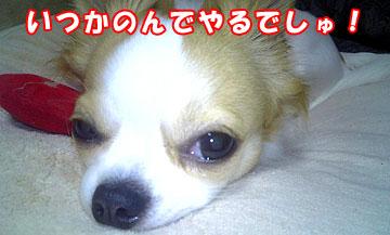 10marine0604_02.jpg