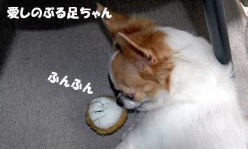10marine1015_02.jpg
