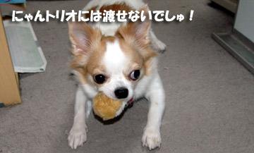 10marine1015_03.jpg