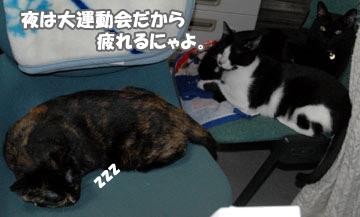 10marine1015_04.jpg