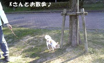 10marine1209_01.jpg