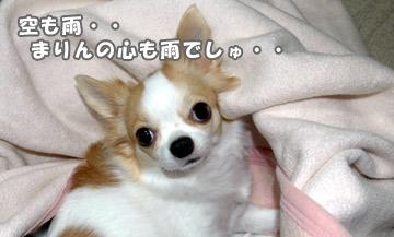 10marine_1001_01.jpg