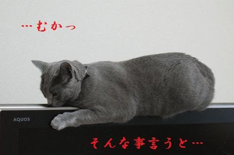 100512-4.jpg