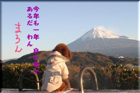 まろん富士-1