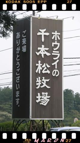 千本松-4