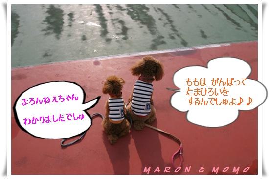 2010 夏 軽井沢テニス-1