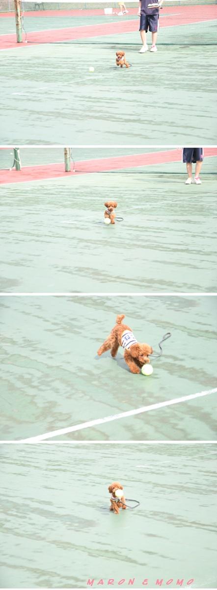 2010 夏 軽井沢テニス-3