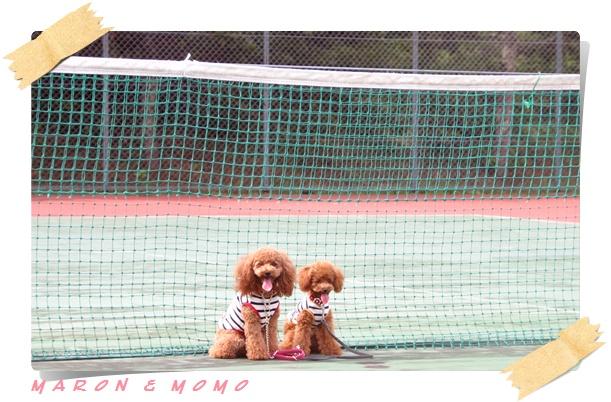 2010 夏 軽井沢テニス-5