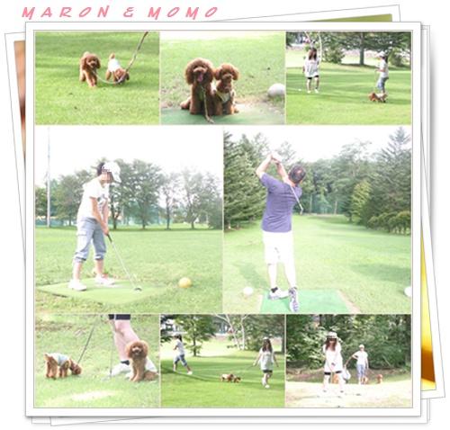 2010 夏 軽井沢ゴルフ