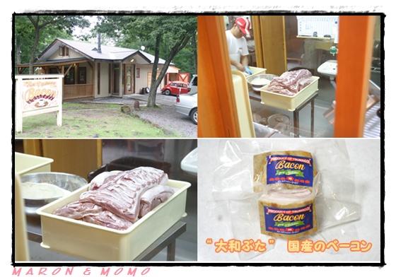 2010 夏 軽井沢-33
