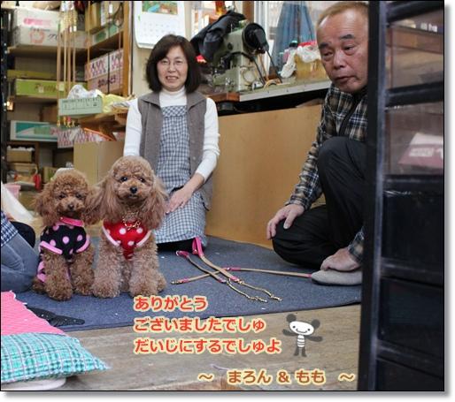2011-1東京11