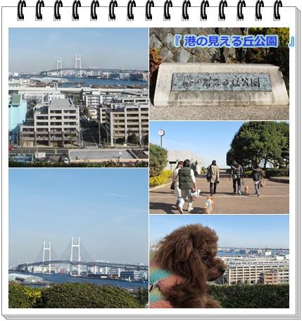 2011横浜旅行-12