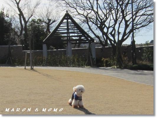 2011横浜旅行-59