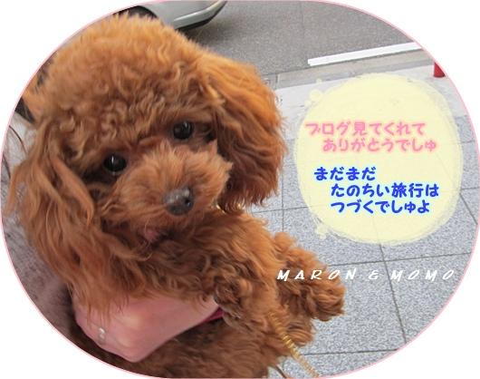 2011横浜旅行-68