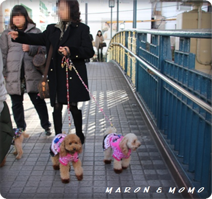 2011横浜旅行-69