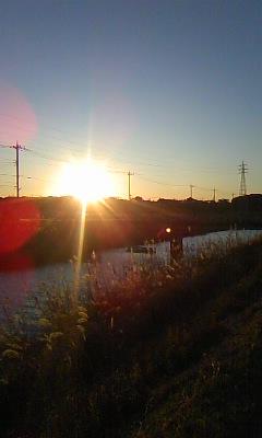 夕陽川沿い