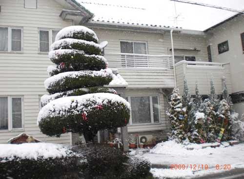 2009.12.19.雪景色自宅