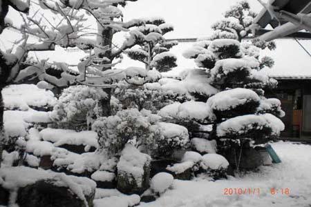 元旦朝の雪景色