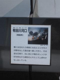 006_20110206193338.jpg