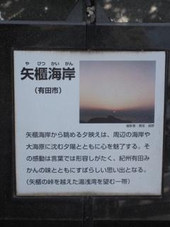 017_20110206193338.jpg