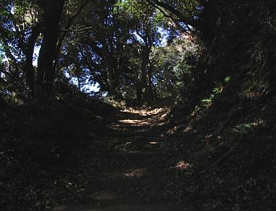 atamikara_201001_03.jpg