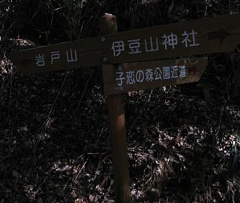 atamikara_201001_04.jpg