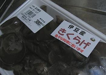 namakikurage_201002_01.jpg