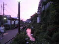 池尻の緑道