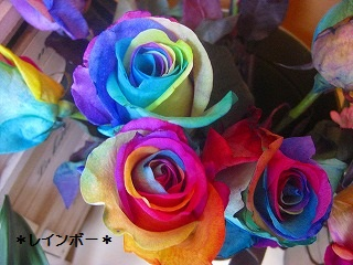 2010_1215_145534-IMG_0702.jpg