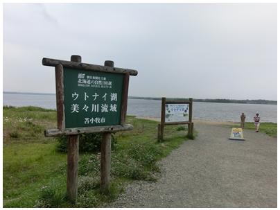 250815ウトナイ湖1