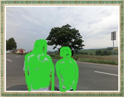 セブンスターと親子の木