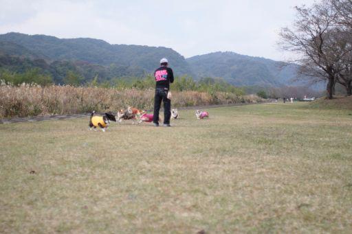 20091104-29.jpg