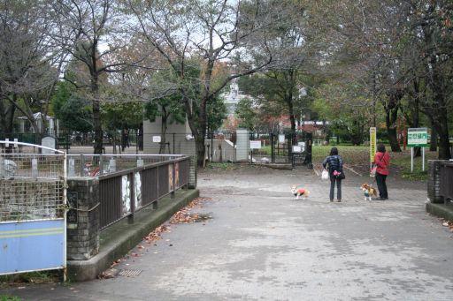 20091107-16.jpg