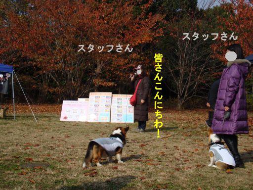 20091201-20AA.jpg
