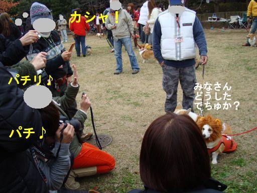 20091201-61.jpg