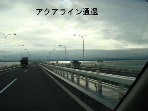 20091207-2.jpg