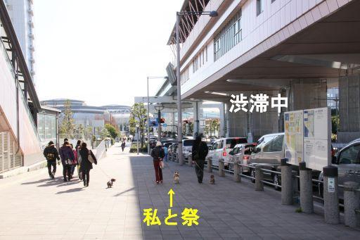 20091223-1_512A.jpg