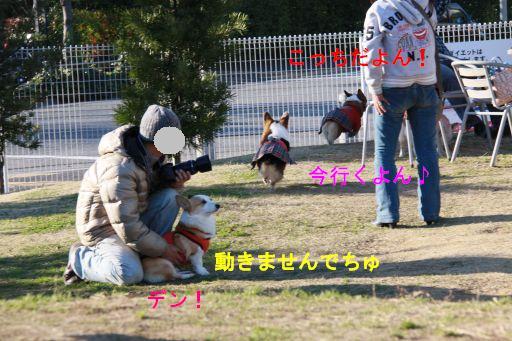 20091223-20_512A.jpg