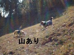 20100102-19(256).jpg