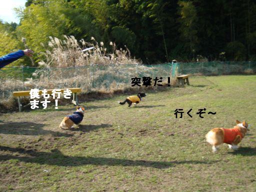 20100102-4.jpg